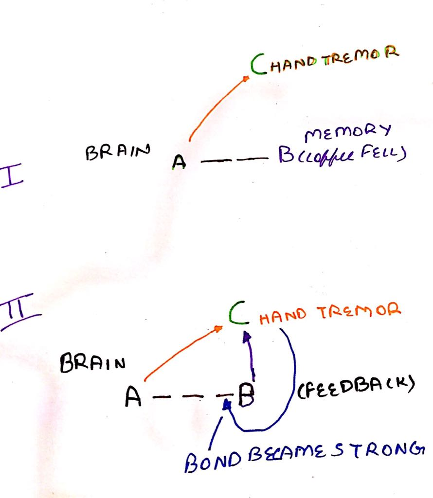 Brain -1